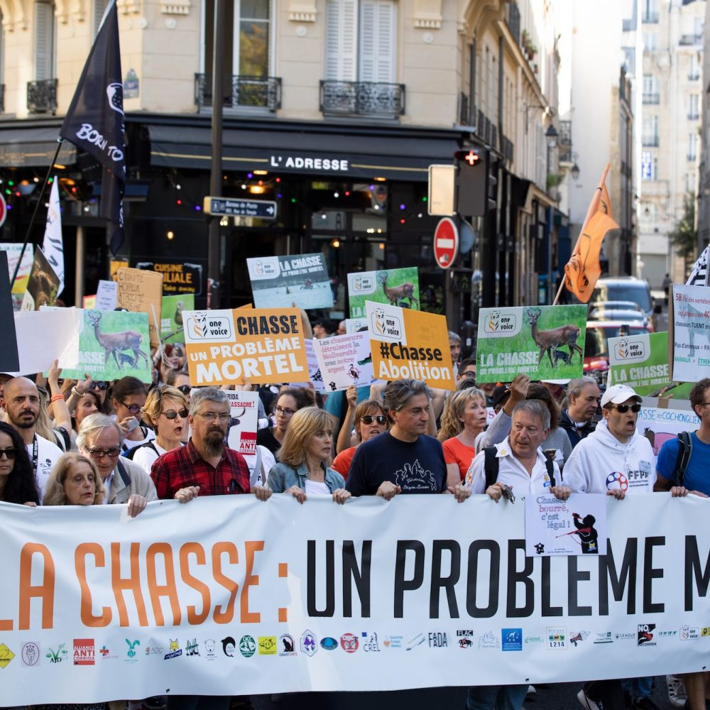 Manif-Chasse-27 copie